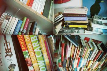 Auch zu viele - oder etwa zu wenig - Bücher zu Hause? Auf zu Lisar!